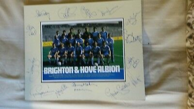 Brighton & Hove Albion Cup Final Mount 1983, signed x 14