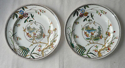 2 x pretty 'aesthetic' Victorian plates 10 ins William Whiteley Dresden 1 chip