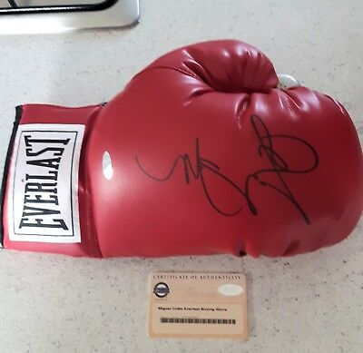 MIGUEL ANGL COTTO Signed Everlast Boxing Glove R/H / STEINER CERT