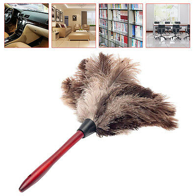 35cm Anti-static Ostrich Bird Feather Duster Brush Wood Handle Natural Grey AU