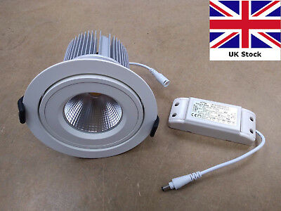LED Adjustable Tilt Downlight 24W Recessed Spotlight driver included