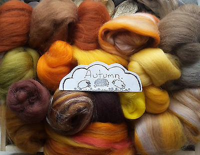 100g Wool Roving Selection / Merino Corriedale British, Natural, Needle felting