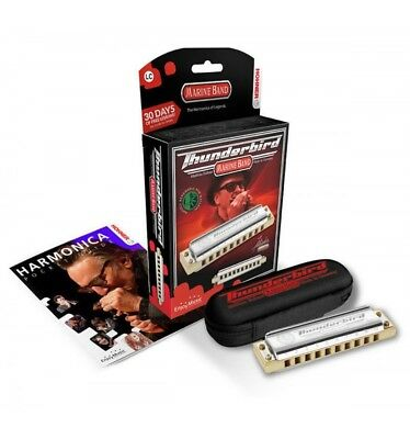 Hohner ThunderBird 10 trous - Do grave - Harmonica diatonique stock B