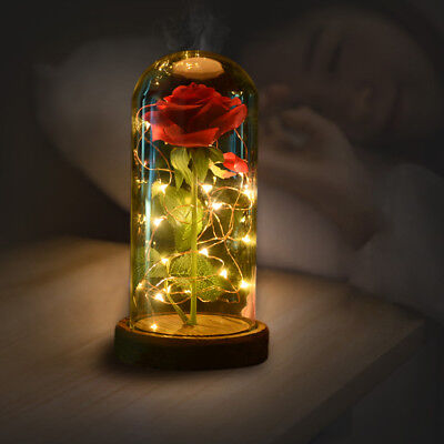 Beauty and the Beast Princess Belle Light Up Enchanted Rose in Glass Dome