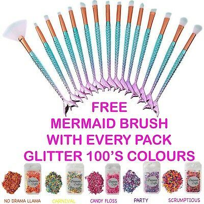 FREE Mermaid Brush with EVERY pack Festival Glitter Mixed Chunky - 200 Colours