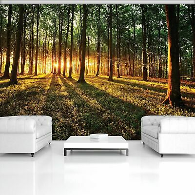 Fototapete Tapete Wandbild Vlies F410222/_VEA Photo Wallpaper Mural Wald