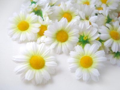 12X White Gerbera Daisy Head Artificial Silk Flower Wedding Bulk Clip Book 1.75""