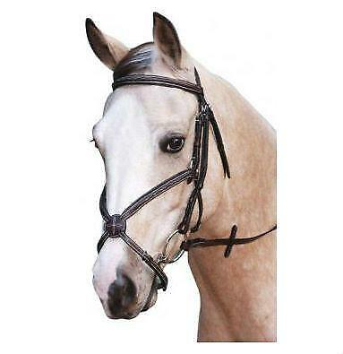 NEW Grackle Bridle Bridles Horse Riding Care Grooming
