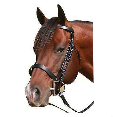 NEW McAlister Flat Cavesson Bridle Bridles Horse Riding Care Grooming