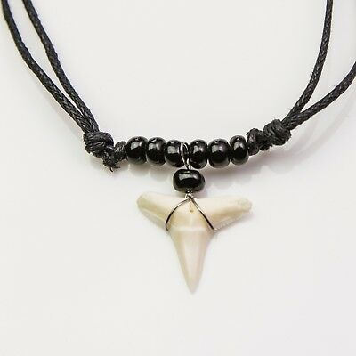 Blacktip shark tooth necklace beach souvenir fishing diving OceanicsharkAU C89