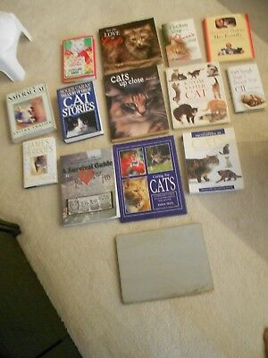 Cat Books (15) All Kinds-Vg+ To Excellent Condition