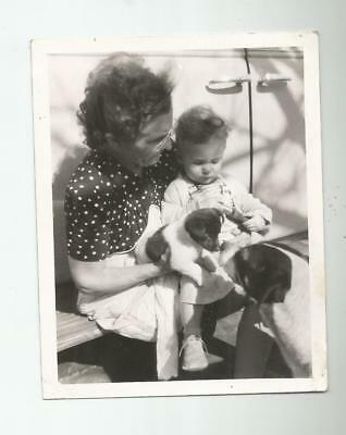 1940's VINTAGE PHOTO GRANDMOTHER BABY GERMAN SHORT HAIRED POINTED DOG PUPPY CUTE