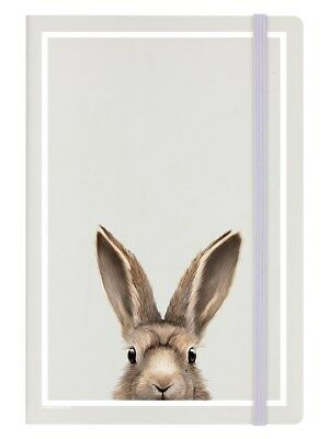 Inquisitive Creatures Hare A5 Hard Cover Cream Notebook 14 x 21cm