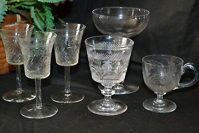 Collection of Victorian / Edwardian Antique Drinking Glasses - Lady Hamilton