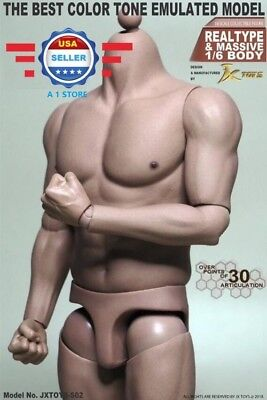 1/6 Scale Male Muscular Figure Body JXS02 For Hot Toys TTM20