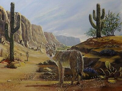 Desert Coyote in Superstition Mountain 16 x 20 Acyrlic Original Masterpiece 2