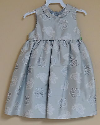 Jack & Teddy Toddler Girl's Boutique Dress Floral Silver W/ Roses Sleeveless New