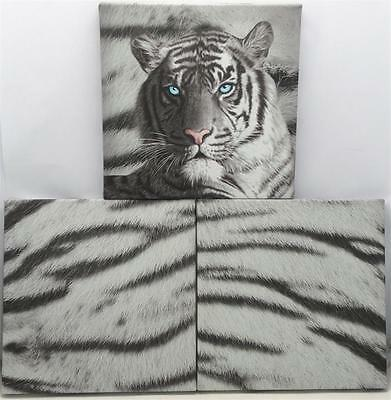 Blue Eyes Stripes White Tiger Wall Canvas Pack (3 Piece) Brand New
