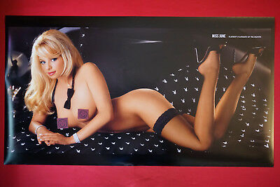 2003 Playboy Magazine Playmate Rare Tailor James Promo Poster 20X36 OOP NEW 03TJ