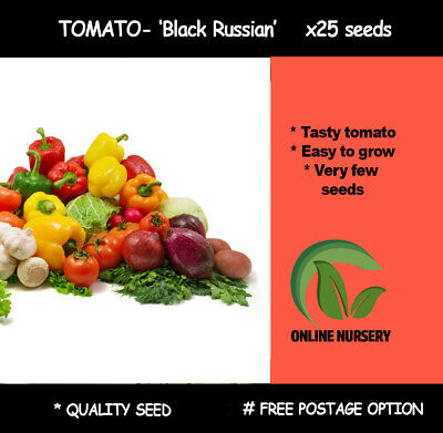 Tomato - 'Black Russian' x25 Seeds (HEIRLOOM) Vegetable garden seeds GREAT TASTE