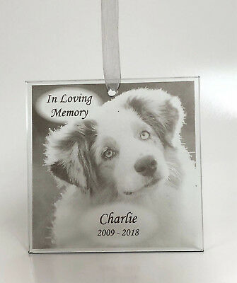 PERSONALISED ENGRAVED GLASS Photo Frame - In Loving Memory Pet ...