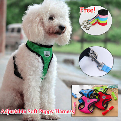 Padded Waterproof Adjustable Pet Puppy Dogs Non Pull Soft Vest Harness  + Rope