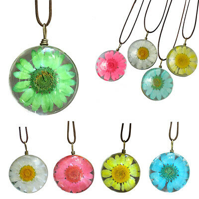 Fashion Transparent Resin Dried Daisy Flower Pendant Necklace Ball Chain Jewelry
