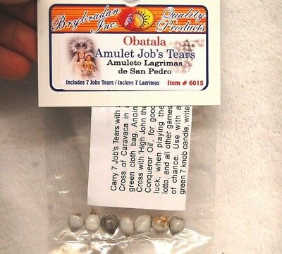 Jobs Tears (7) Obatala Amulet Voodoo Hoodoo Wicca Pagan Witchcraft Ritual Wishes