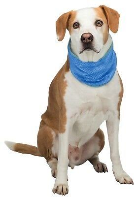 Dog Cool neck Bandana S M or L Cooling for your dog puppy Cooling effect soak