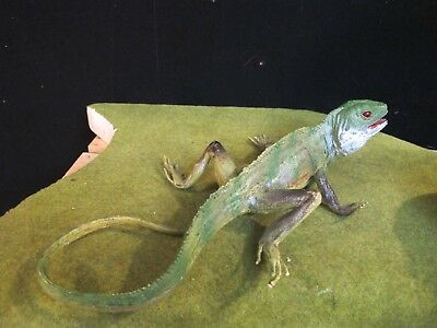 """Replica AAA Animals Toy Life Size Iguana LIZARD Molded Solid PVC Rubber 13"""""""