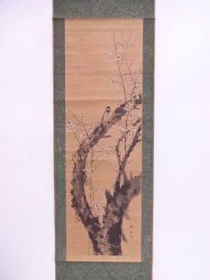 3678188: Japanese Wall Hanging Scroll / Hand Painted / Ume With Bird
