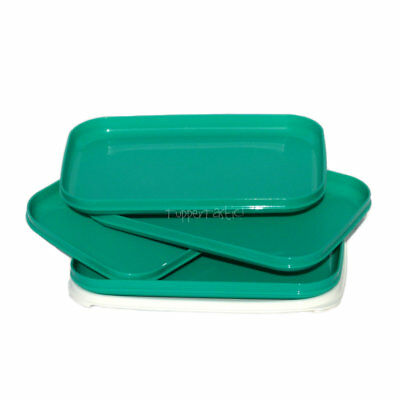 Tupperware Rectangle Lunch PLATES with a Seal x 4 Teal Green NEW Picnic Camping