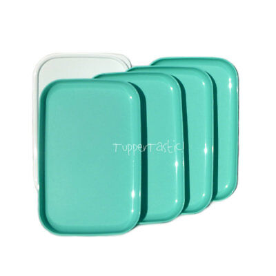 Tupperware Rectangle Lunch PLATES with a Seal x 4 Mint NEW Picnic Camping
