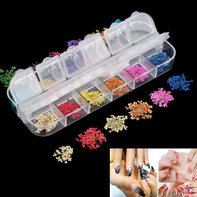 12 colors dried flower real hydrangea petal natural floral nail art for womanSC