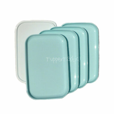 Tupperware Rectangle Lunch PLATES with a Seal x 4 Sea Mist NEW Picnic Camping