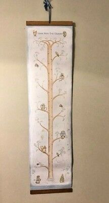 Viintage Beatrix Potter Growth Chart NOS In Box 1976 Design 1990 Manufacture