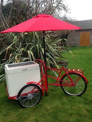2 X freezer blocks for cooler boxes or trade Bikes, Ice Cream Bike Not Included