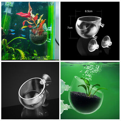 Clear Cup Aquarium Decor Fish Tank Crystal Glass Pot Aquatic Plant Cup Holder S
