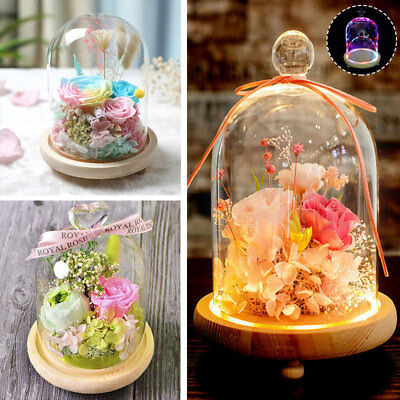 """Cloche Glass Dome 6"""" 8"""" 10"""" LED Display Bell Jar Flower Vase with Wood Base Xmas"""