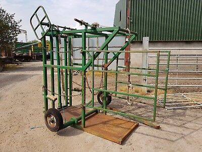 cattle foot trimming crush good order can deliver tractor dgger no reserve