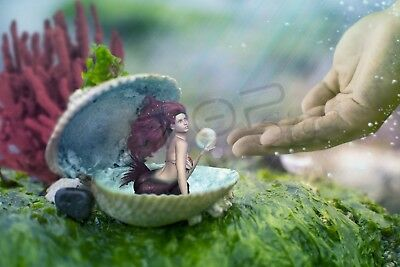Digital Picture Image Photo Wallpaper JPG Pearl of Mermaid Desktop Screensaver