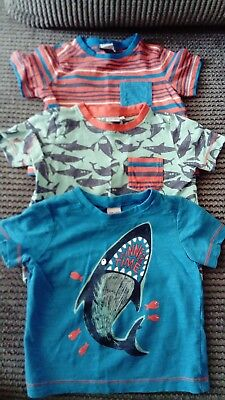 Baby boy 9-12 Months T-shirts Mini club