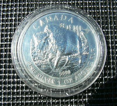 5 Dollars Kanada Silber Wildlife Wood Bison 2013 BU in Kapsel