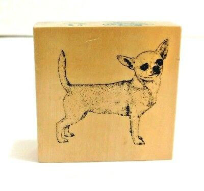 Chihuahua Rubber Stamp Dog Stamp Gallery Lifelike Wood Mount Craft