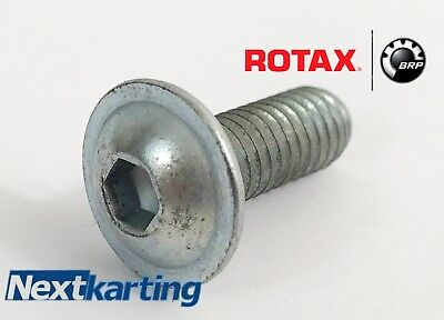 Genuine Rotax Max Silver Radiator Bolt / Nextkarting