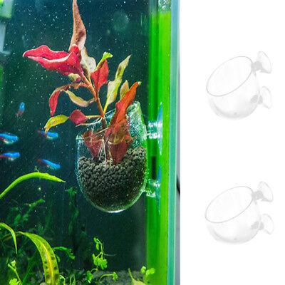 Aquarium Fish Tank Holder Glass Suction Cup Crystal Planter Glass Pot Holder