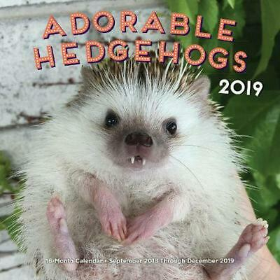 Adorable Hedgehogs 2019: 16-Month Calendar - September 2018 through December 201