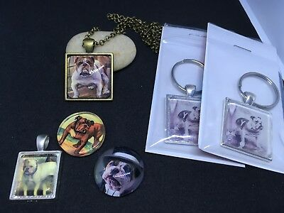 Lot of 6 English Bulldog Gifts Necklace Keychain Magnets