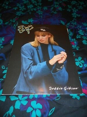 Debbie Gibson - Electric Youth - Press Kit Folder & Notes - No Photos