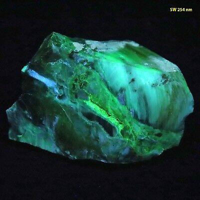 bb: Multicolored Fluorescence in Opalized Wood from Nevada